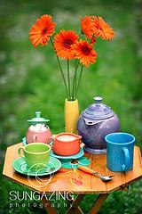 fiesta table settings | Fiestaware Discontinued